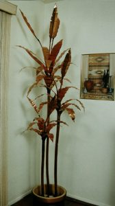 Copper Palm Tree 8'